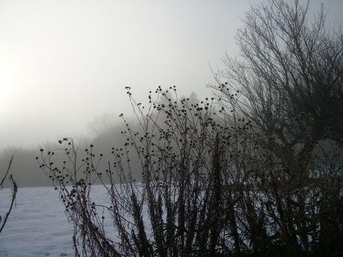 風景-20080205-04