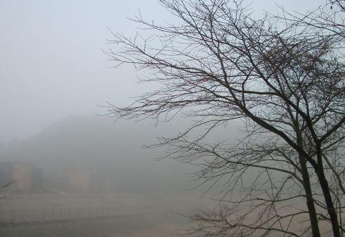 風景-20080205-6