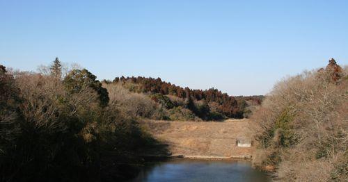 景色-20080221-1