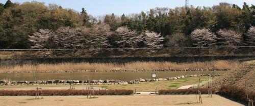 風景-20080401-3