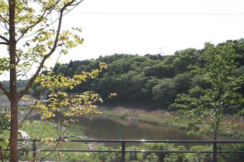 風景-20080506-1