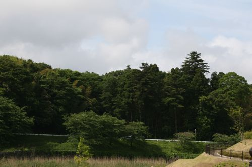 風景-20080604-1