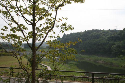 風景-20080802-1