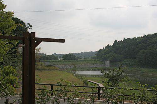 風景-20080802-3