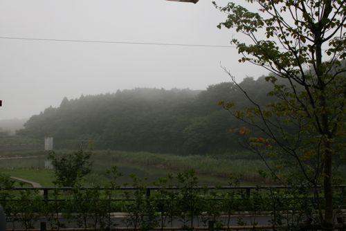 景色-20080902-1