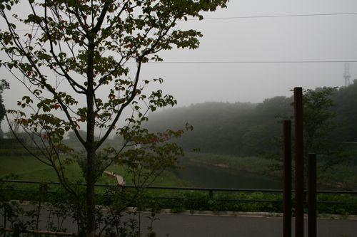 景色-20080906-1