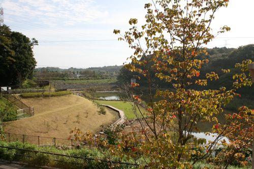 景色-20081007-1