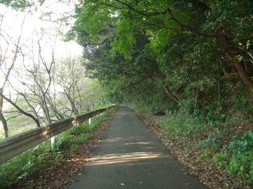 散歩_20081020-1
