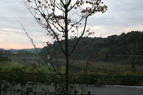 風景-20081030-1