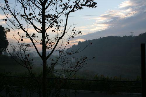 風景-20081104-1