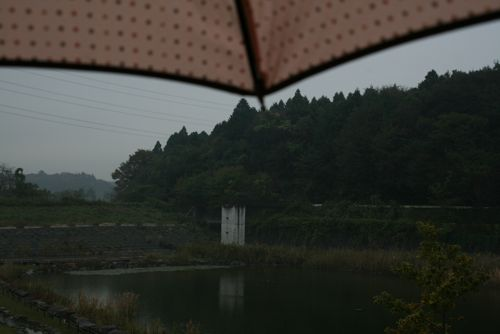 風景-20081107-1