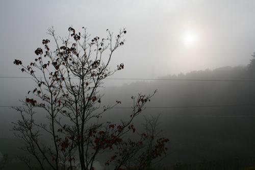 風景-20081117-1