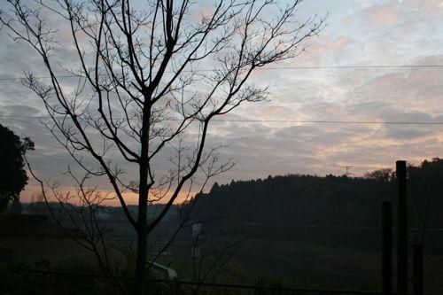 風景-20081209-1