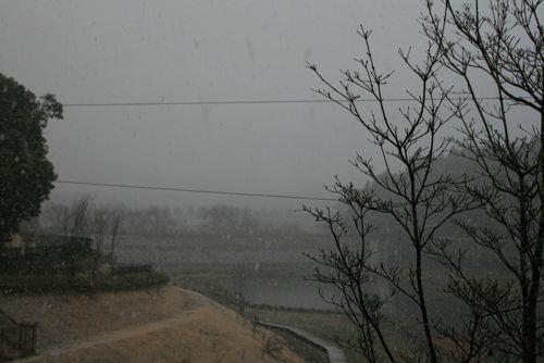 風景-20090227-2