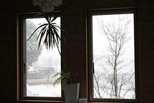 風景-20090227-4