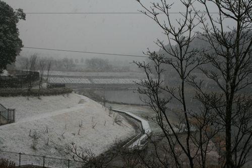 風景-20090227-5