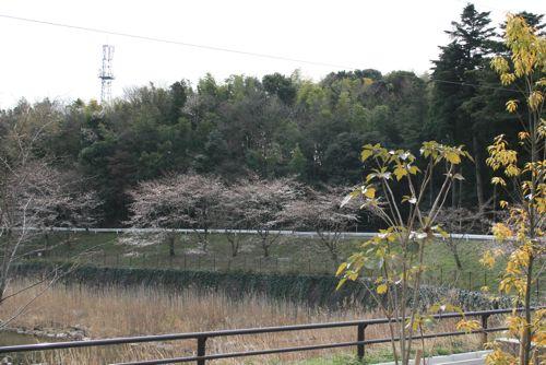 風景-20090330-1