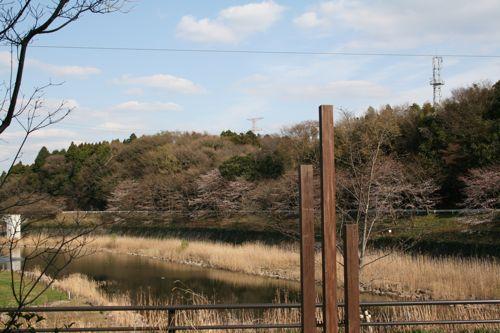 風景-20090328-1