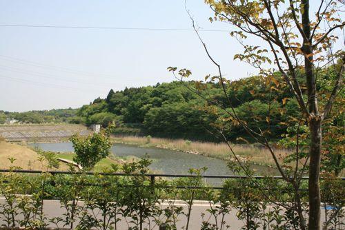 風景-20090502-1