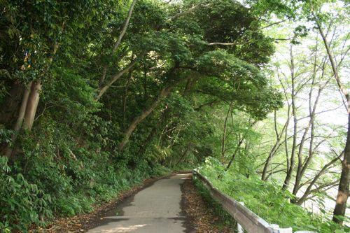 風景-20090602-1
