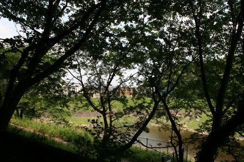 風景-20090602-2