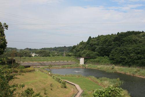 風景-20090717-2