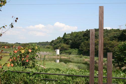 風景-20090829-1