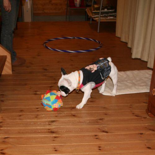 at_home-20081010-1.jpg