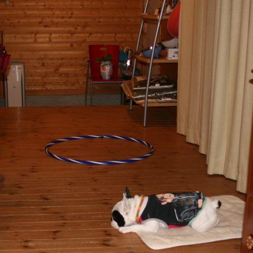 at_home-20081010-2.jpg