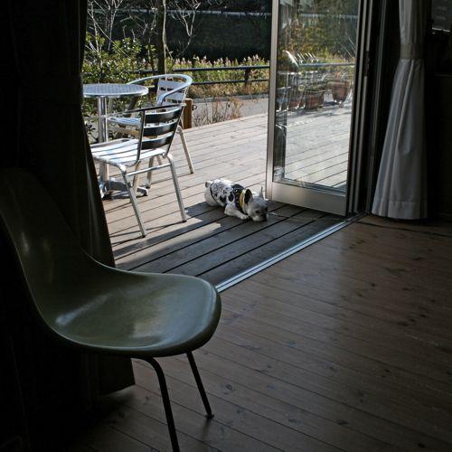 at_home-20081223-1.jpg