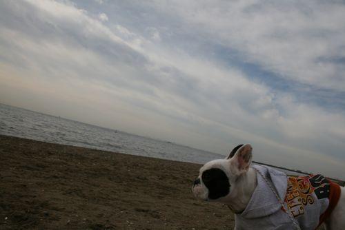 sanpo-20090126-4.jpg