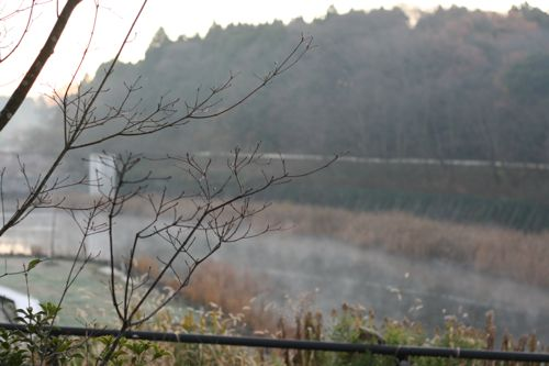 view-20081215-1.jpg