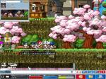 Maple00140.jpg