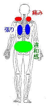 出産後の骨盤の開きと背部痛
