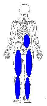 走りすぎで発生した股関節の痛みと下肢の重ダルさ