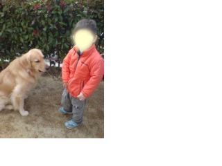 snap_ichi612_200934151545.jpg