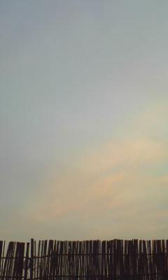 niroku3.jpg