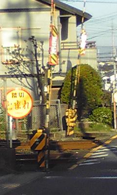 njyuichi7.jpg