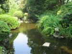 キャンパスの池