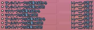 20060525115138.jpg