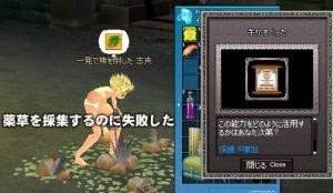 20060715093116.jpg