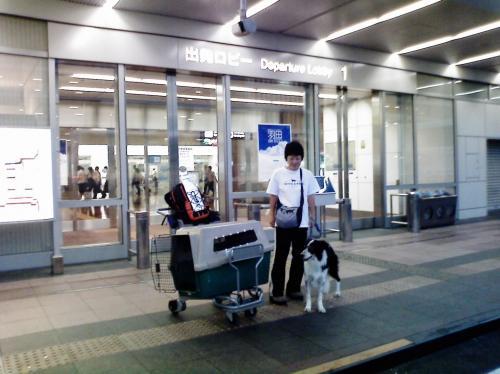 haneda2_convert_20080929162659.jpg
