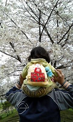肩車で花見