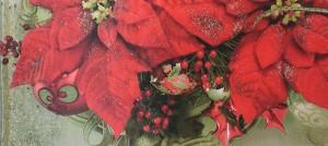 Weihnachtsstern02.jpg