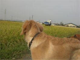 20080915dan2.jpg