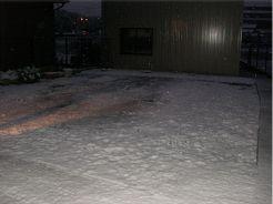 20081120yuki2.jpg