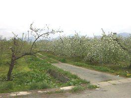 20090504gw3.jpg