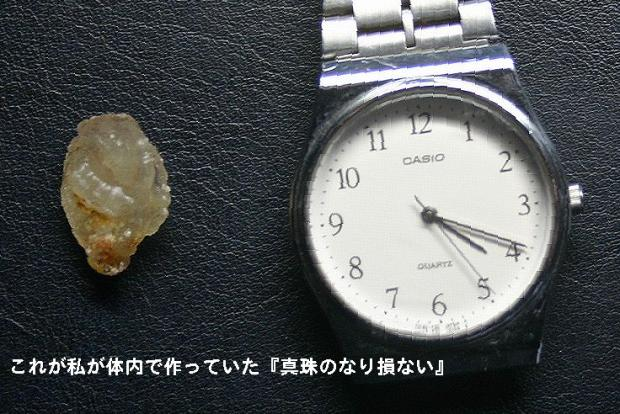 20071025113817.jpg