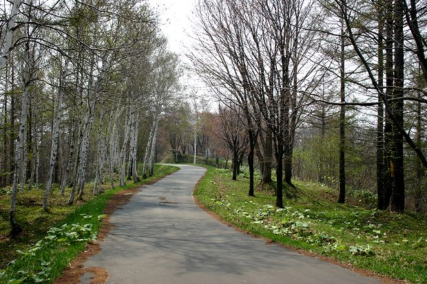 4月28日山の散歩道