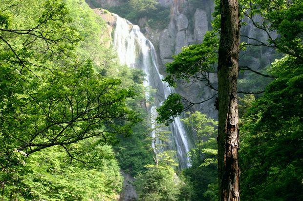 7月5日羽衣の滝No3